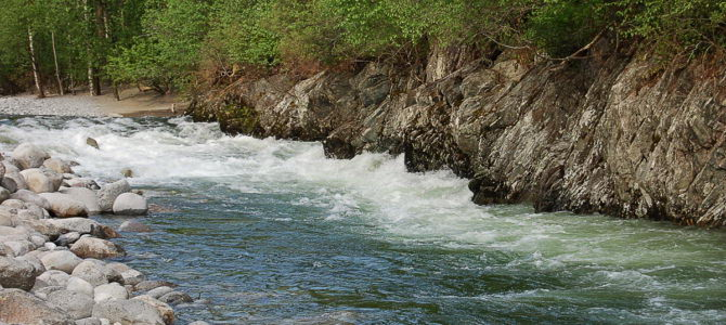 Устье реки «Кокши»