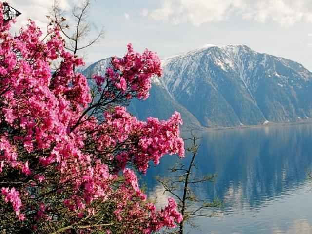 5 причин, чтобы отдохнуть у озера
